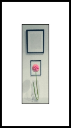 flor stories